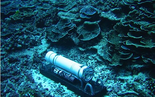 Coral reef EAR